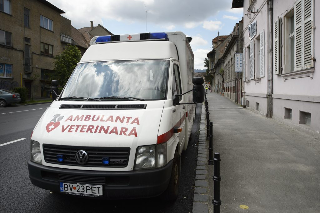 ambulanta veterinara