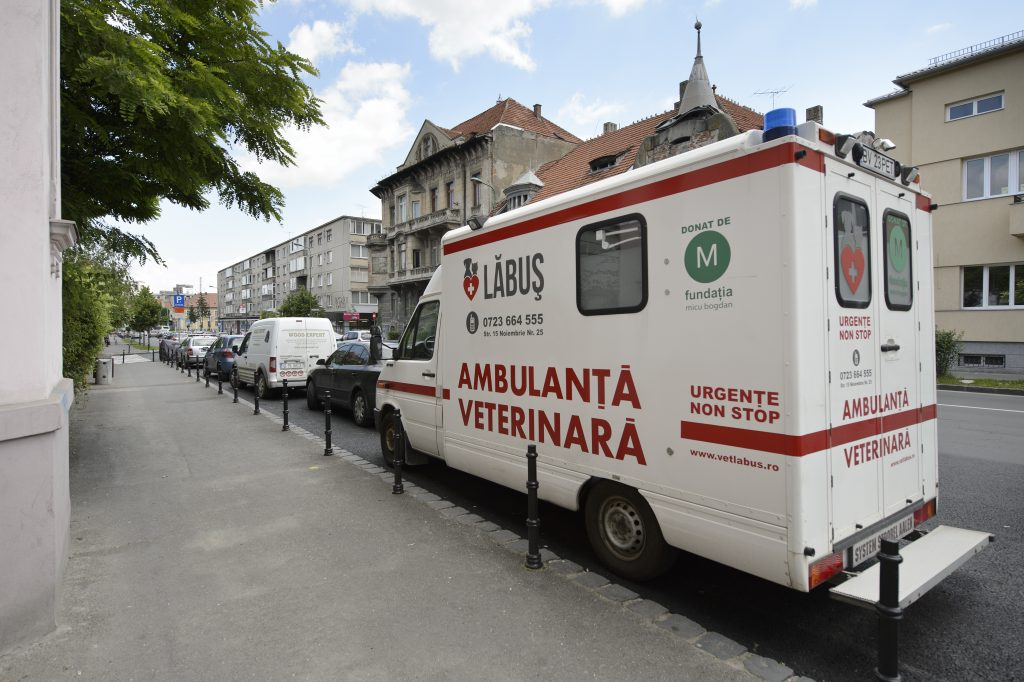 Ambulanta veterinara Brasov